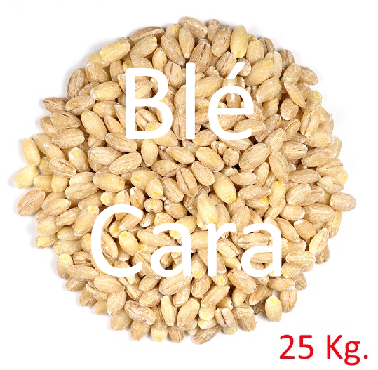 Malt de Blé Caramel
