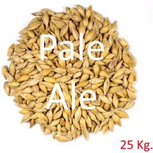 Malt Pale Ale